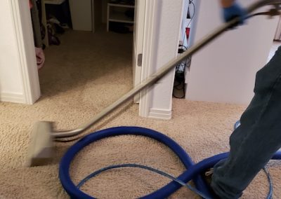 carpet & rug cleaning 6